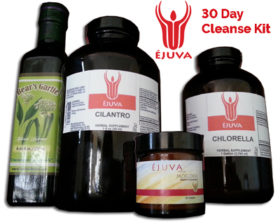 1ejuva-heavy-metal-cleanse-kit-big-copy